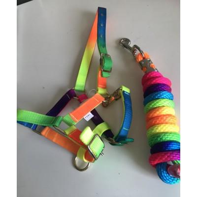 Capezza e Longhina Multicolore Fluo